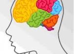¿Logopedia y estimulación cognitiva?